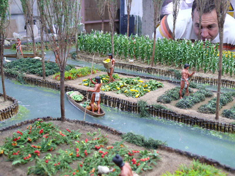 What Is The Definition Of Chinampas